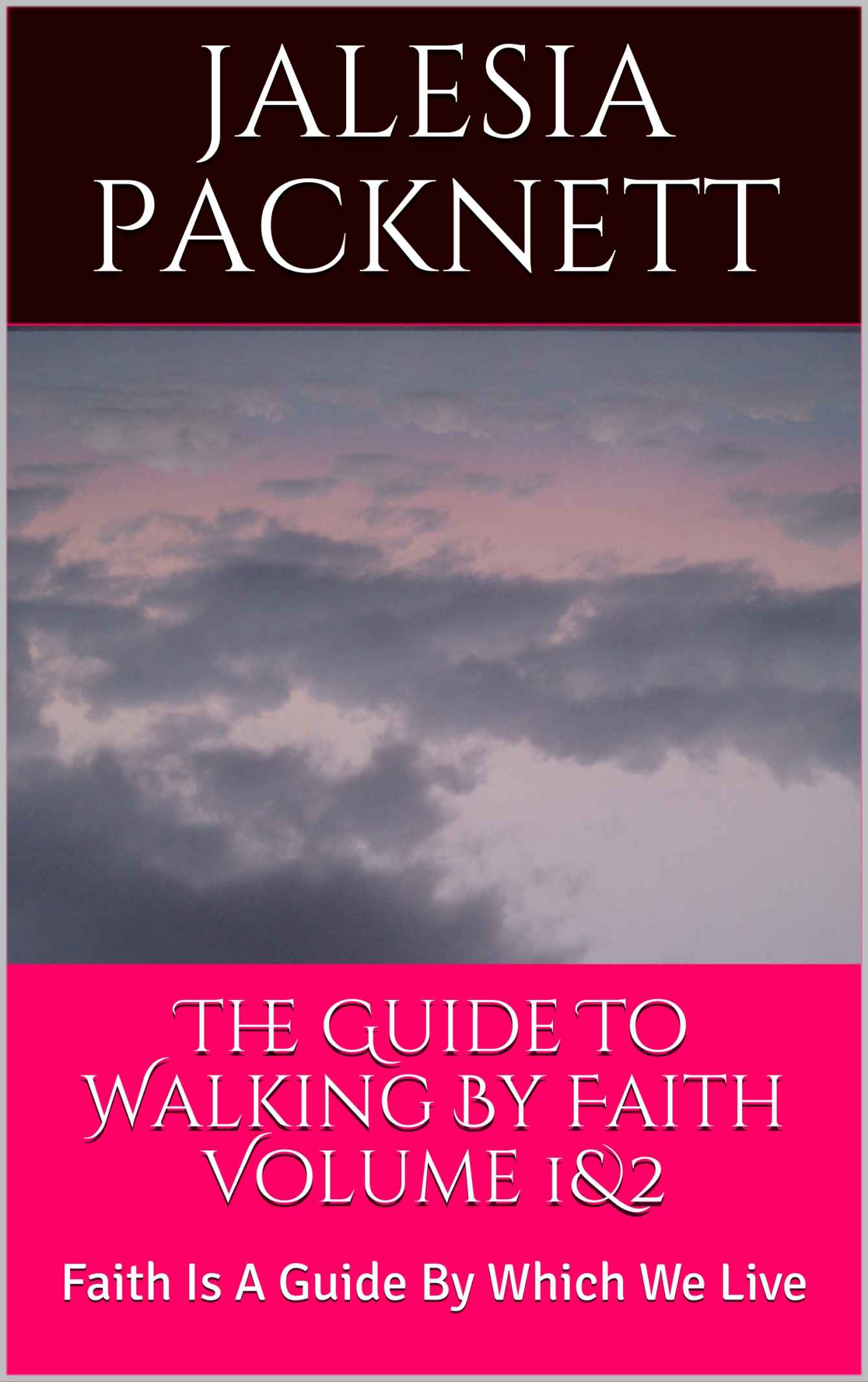The Guide To Walking By Faith Volume 1&2: Faith Is A Guide By Which We Live